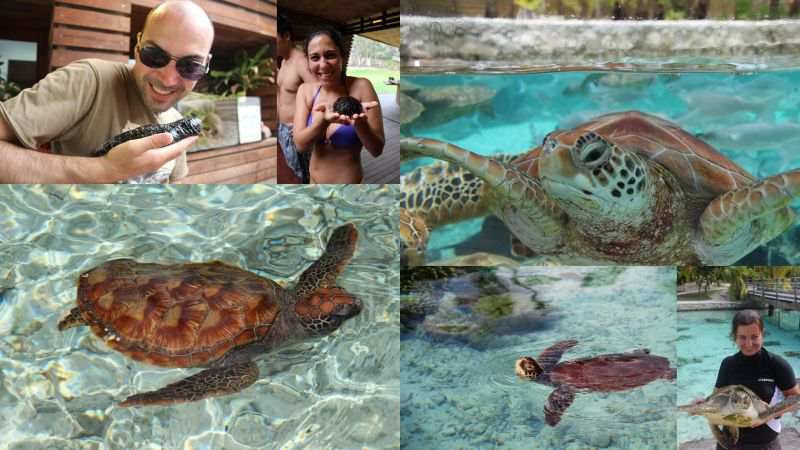 20131024 a 01 - Bora Bora2